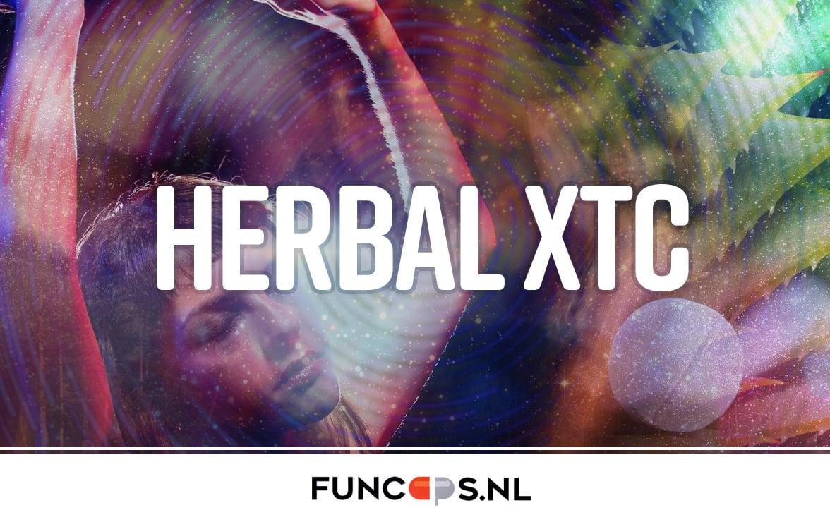 Herbal xtc