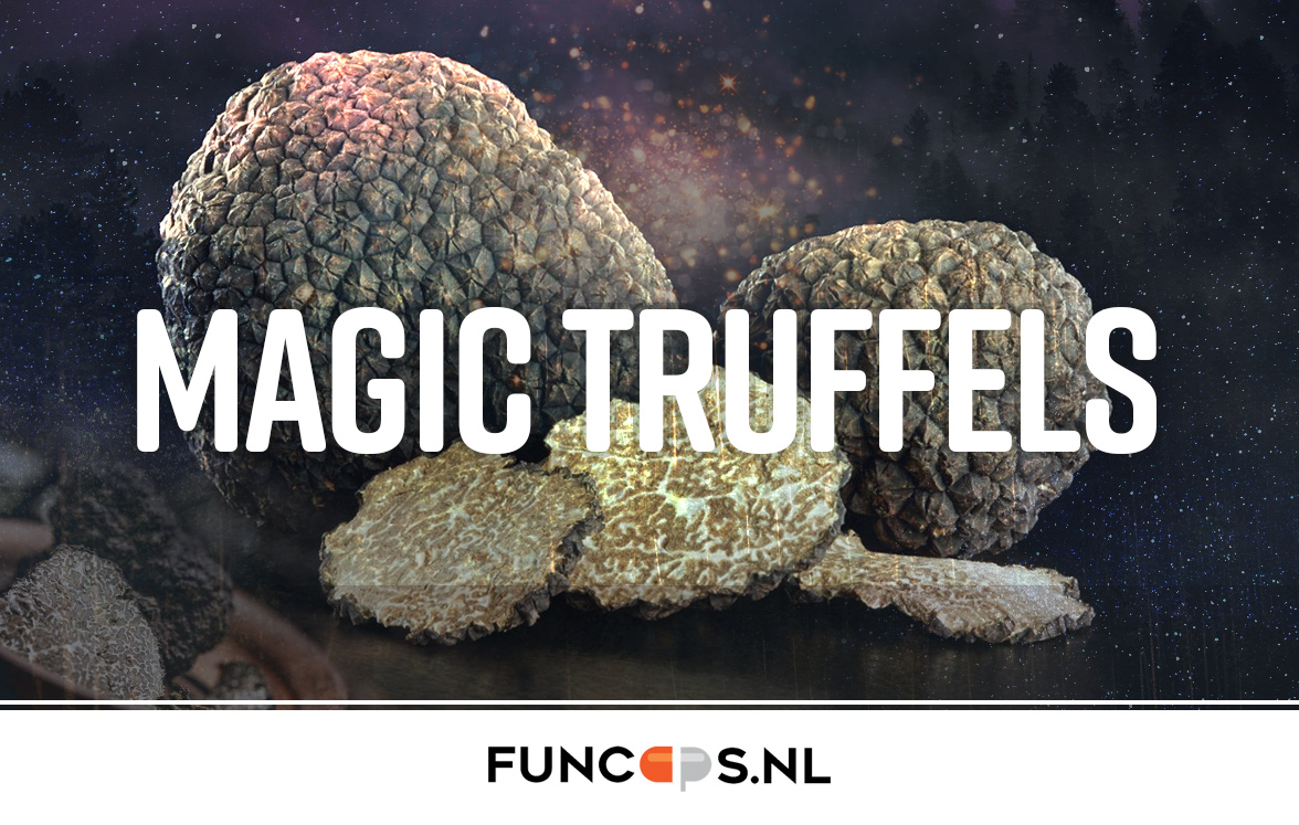 Magic-Truffels-kopen